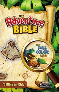 Cover of the NIV adventure Bible for kids